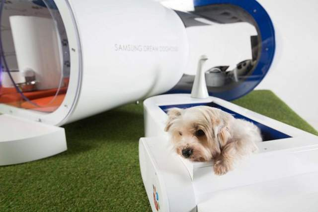 $30,000 dog house from samsung – for those who are filthy rich